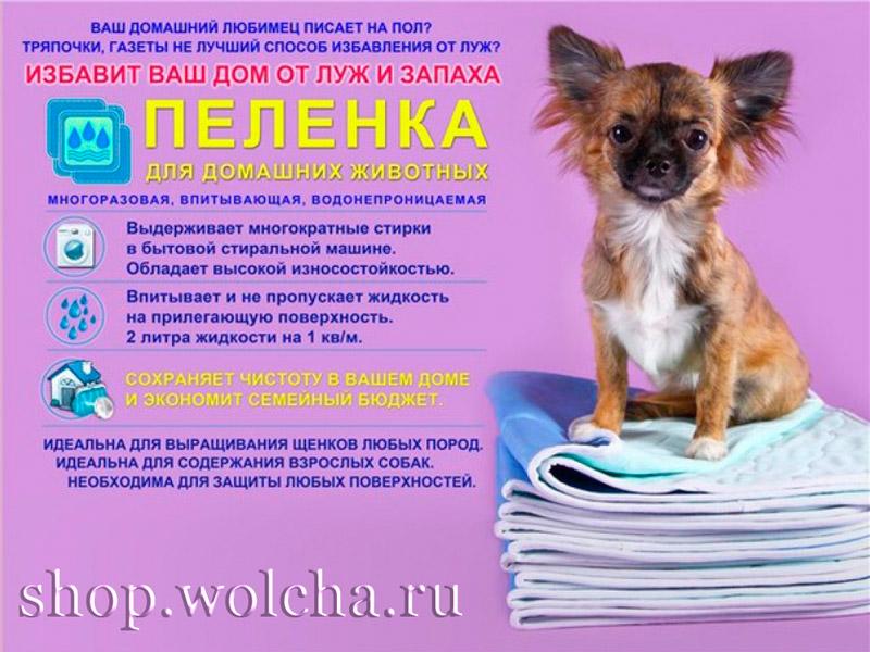 """Интернет магазин товаров для животных """"Shop-wolcha"""" 01c6e25ad92faf999ba2e32381290be2"""