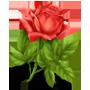 http://s2.hostingkartinok.com/uploads/images/2012/07/41c62323663d43b89511db0572f6e9df.png