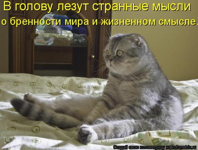 http://s2.hostingkartinok.com/uploads/images/2012/09/9eca13e0699563410ca66b21083e6ed8.jpg