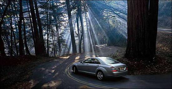 Автомобиль на лесной дороге