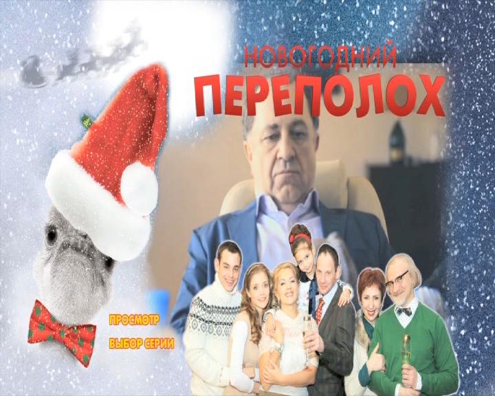 Новогодний переполох (1-4 серии из 4) (2012) DVD9