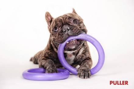 """Интернет магазин товаров для собак """"Волча"""" F36ca4df2bbe7cf8e2f04b0cdd95e2ec"""
