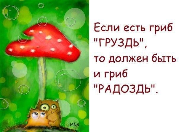 http://s2.hostingkartinok.com/uploads/images/2013/06/4614bbb2a9140c7b5797e6764fcd5cdc.jpg