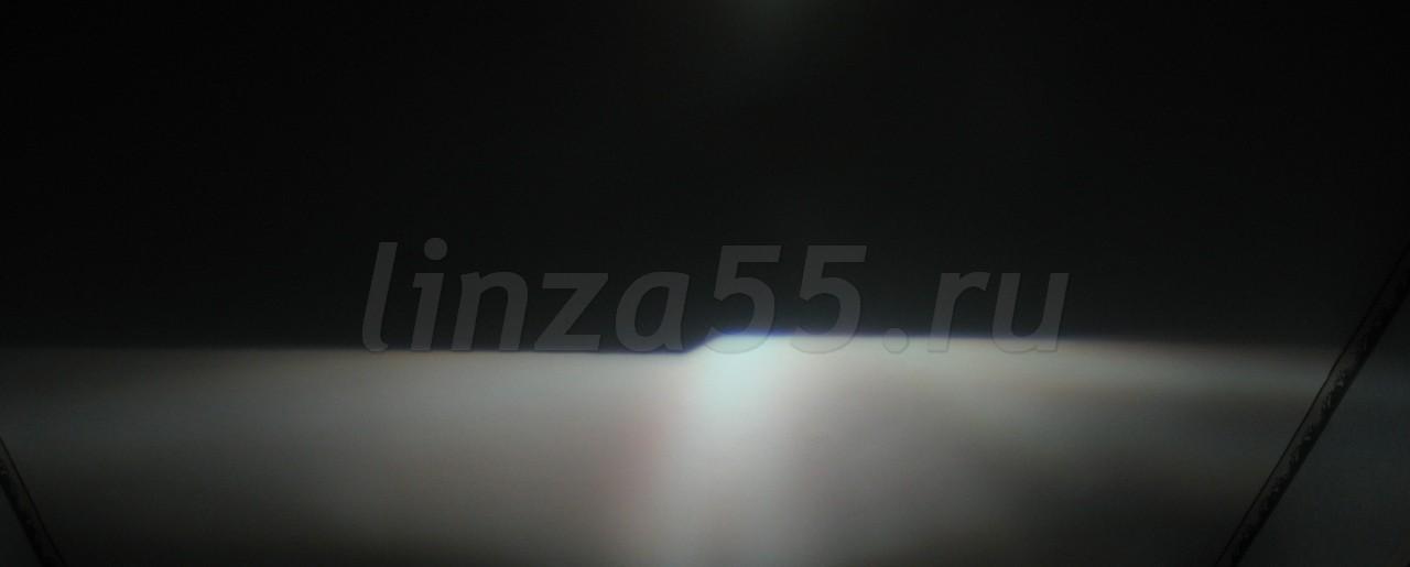 IMG_7264_cr.jpg