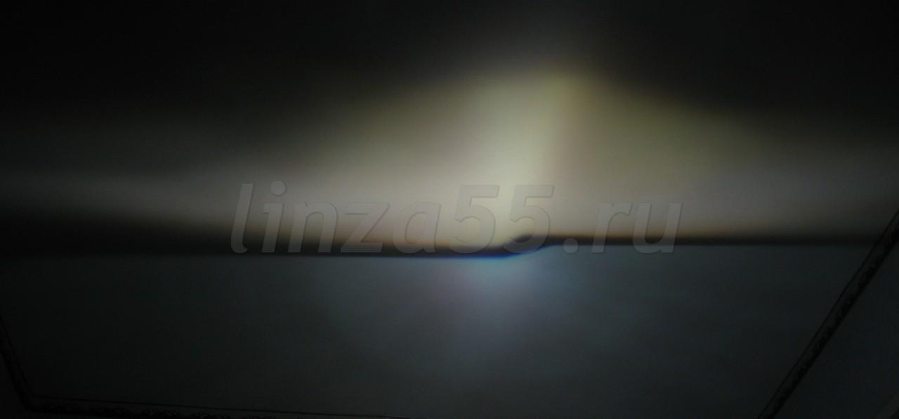 IMG_7268_cr.jpg