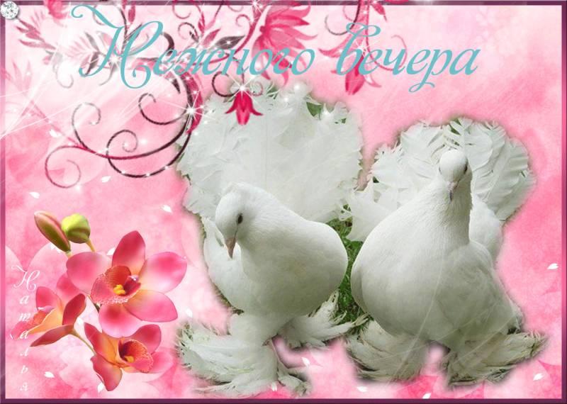Веронике лет, картинки с голубями и надписями