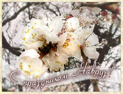 http://s2.hostingkartinok.com/uploads/images/2012/06/ffad5cff41736d3a6ef7f8f356c65f64.jpg