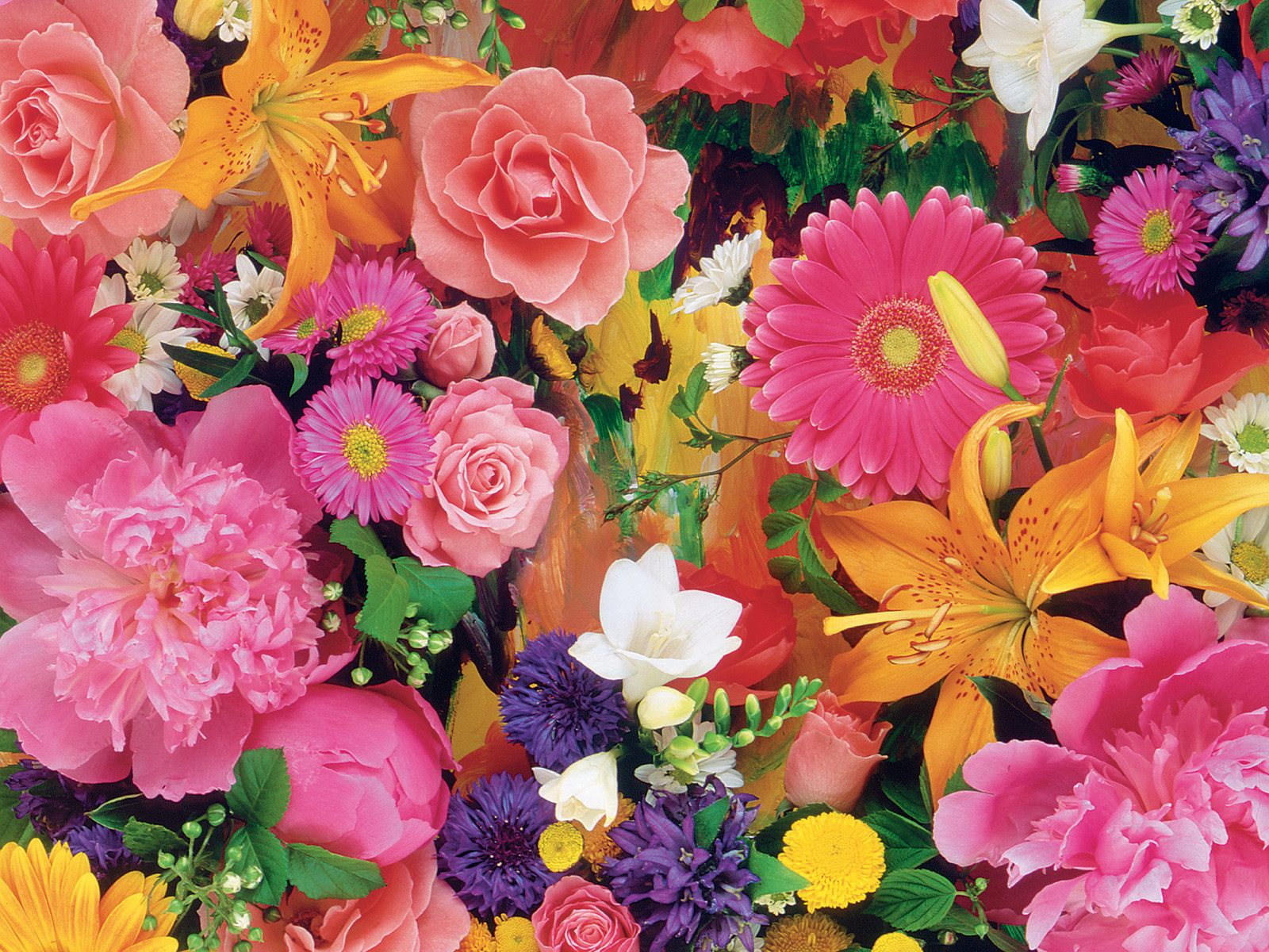 при картинки всех расцветок творческой копилке успешной