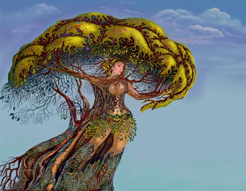 картинки мифическое дерево выдвижных ящиков